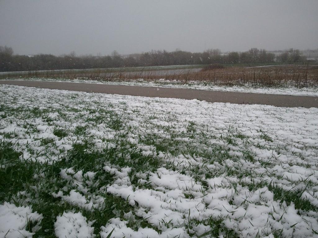 Record May Snow